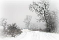 La première neige 2 de l'hiver Photos stock