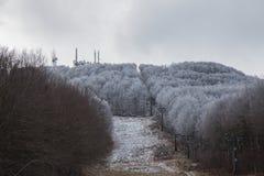 La première neige Images libres de droits