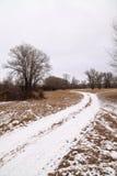 La première neige dans les bois Images stock