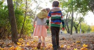 La première passion, fille marche avec le type tenant des mains dans le contre-jour aux feuilles jaunes en parc clips vidéos