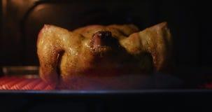 La preparación del conjunto frió el pollo curruscante con las especias en el horno, cocinado en una estufa eléctrica almacen de video