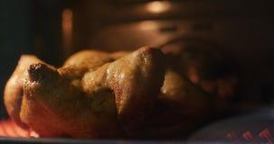 La preparación del conjunto frió el pollo curruscante con las especias en el horno, cocinado en una estufa eléctrica almacen de metraje de vídeo