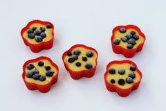 La preparazione per i muffin bollenti con l'uva passa, pasta ? sparsa fuori nelle muffe del silicone immagini stock libere da diritti