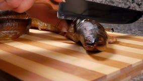 La presentadora cortó la cabeza de la anguila ahumada almacen de metraje de vídeo