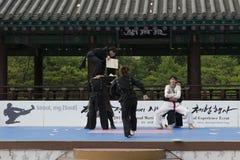 La prestazione di arte marziale e l'evento coreani tradizionali di esperienza mostrano Immagini Stock Libere da Diritti