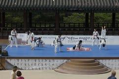 La prestazione di arte marziale e l'evento coreani tradizionali di esperienza mostrano Fotografia Stock