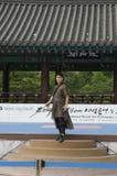 La prestazione di arte marziale e l'evento coreani tradizionali di esperienza mostrano immagini stock