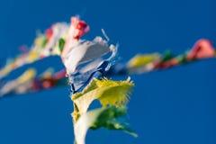 La prière bouddhiste tibétaine colorée marque l'ondulation dans le vent sur bleu Photographie stock
