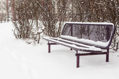 La prima bufera di neve Immagine Stock Libera da Diritti