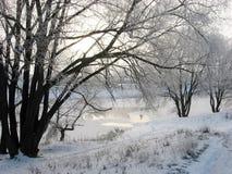 La prima neve ha caduto da immagini stock