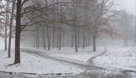 La prima neve nel parco della città Paesaggio di inverno Mattina nebbiosa fotografia stock