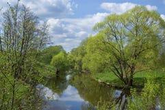 La prima sorgente si inverdice sul piccolo fiume Fotografia Stock Libera da Diritti