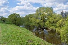 La prima sorgente si inverdice sul piccolo fiume Fotografie Stock
