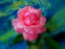 La primavera è aumentato Fotografia Stock Libera da Diritti