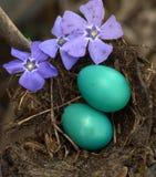 La primavera è nell'aria Fotografie Stock