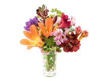 La primavera colorida florece en el florero aislado en blanco fotos de archivo libres de regalías