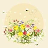 La primavera d'annata fiorisce il vettore del giardino della natura dell'ape Immagine Stock