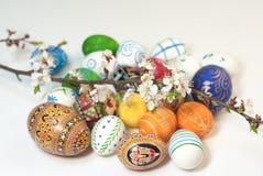 La primavera di Pasqua eggs i fiori Immagini Stock