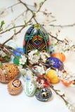 La primavera di Pasqua eggs i fiori Fotografia Stock