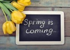 La primavera está viniendo Foto de archivo