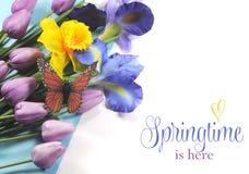 La primavera está aquí texto de la muestra en el fondo blanco con las flores de la primavera Fotografía de archivo libre de regalías