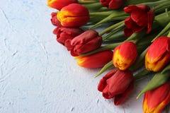La primavera fiorisce i tulipani su una tavola strutturata di pietra 8 marzo, giorno internazionale del ` s delle donne, giorno d Immagini Stock Libere da Diritti
