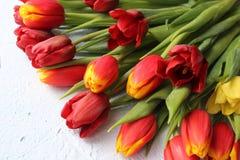 La primavera fiorisce i tulipani su una tavola strutturata di pietra 8 marzo, giorno internazionale del ` s delle donne, giorno d Immagini Stock