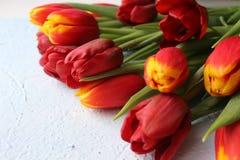 La primavera fiorisce i tulipani su una tavola strutturata di pietra 8 marzo, giorno internazionale del ` s delle donne, giorno d Immagine Stock