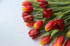 La primavera fiorisce i tulipani su una tavola strutturata di pietra 8 marzo, giorno internazionale del ` s delle donne, giorno d Fotografia Stock