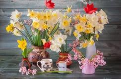 La primavera fiorisce in un canestro ed in un caffè fotografia stock libera da diritti