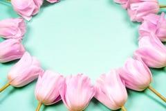 La primavera florece la bandera - manojo de flores rosadas del tulipán en fondo del cielo azul Imagen de archivo