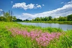 La primavera florece el campo de las nubes del cielo azul del paisaje del río Fotografía de archivo
