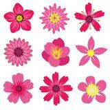 La primavera florece el ejemplo del vector Foto de archivo libre de regalías