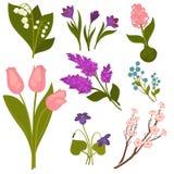 La primavera florece la colección realista en blanco Fotos de archivo libres de regalías