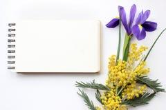 La primavera florece la mimosa y a Iris Mockup Medios del social del blog de los posts Imagenes de archivo