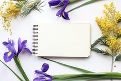 La primavera florece la mimosa y a Iris Mockup Medios del social del blog de los posts Imagen de archivo libre de regalías