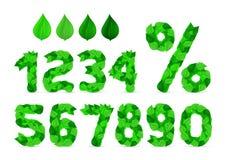 La primavera fresca verde sale de la fuente, del número y del por ciento de la ecología Imágenes de archivo libres de regalías