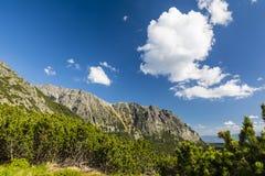 La primavera ha venido a las montañas Un panorama maravilloso de la naturaleza de la montaña Imágenes de archivo libres de regalías