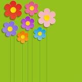 La primavera hermosa florece el fondo verde - vector Imágenes de archivo libres de regalías