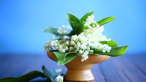 La primavera hermosa florece el lirio de los valles
