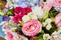La primavera hermosa florece en colores suavemente rosados y azules claros Imágenes de archivo libres de regalías