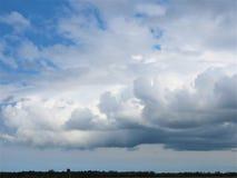 la Primavera-natura nasce, cieli blu Fotografie Stock Libere da Diritti
