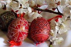 La primavera Pascua adornó los huevos Foto de archivo libre de regalías