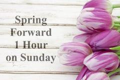 La primavera remite un mensaje de la hora Fotografía de archivo libre de regalías