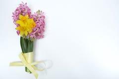 La primavera rosada y amarilla florece, pascua domingo, espacio de la copia, isolat Imagenes de archivo