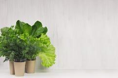 La primavera se pone verde para la ensalada en potes en el interior blanco de la cocina Alimento vegetariano sano imágenes de archivo libres de regalías