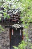 La primavera sta venendo ad un villaggio normale in provincia del Sichuan della Cina fotografia stock libera da diritti