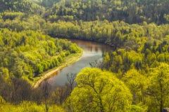La primavera sta venendo! River Valley ha svegliato da sonno Fotografie Stock Libere da Diritti