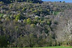 La primavera viene a las montañas Fotografía de archivo libre de regalías