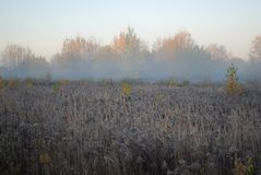 La primera helada, niebla por la mañana del otoño en el campo Imagenes de archivo